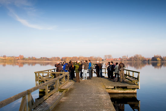 Herbstexkursion am Seeburger See